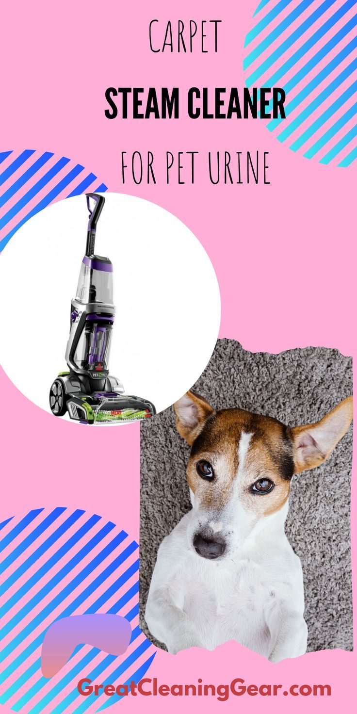 Commercial Carpet And Floor Cleaner Top