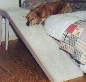 Big Dog Bed Ramp Big Dogs Man S Best Friend Www