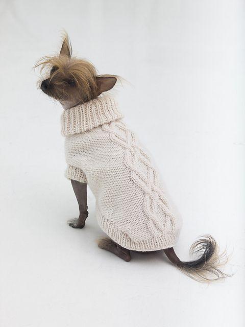 """lionbrandyarn: """"Free Knitting Pattern: Prep Dog Sweater in Wool-Ease ..."""