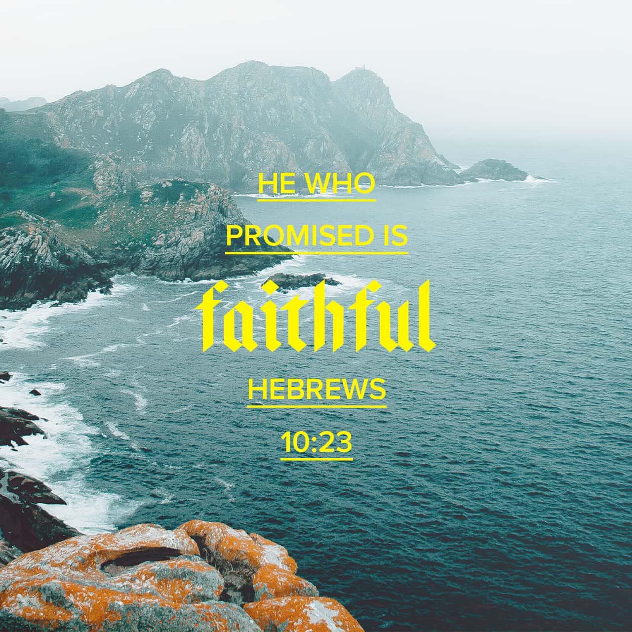 Philippians 313_14 Faith in god, Bible apps, Bible