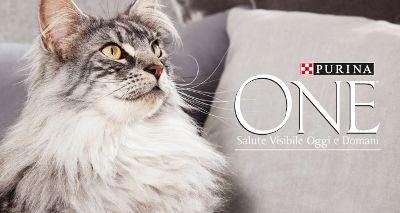 Rispondi alla domande e ricevi Purina One Dual Nature con PetPassion