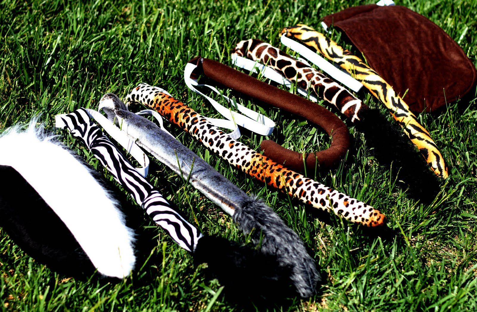 Animal Tails With Images