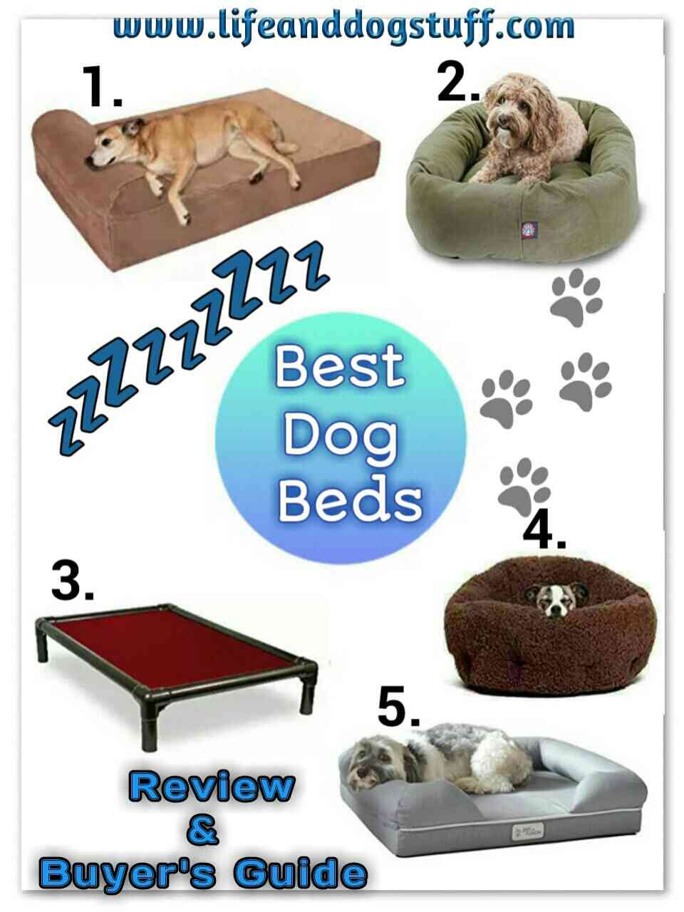 Top 5 Best Dog Beds Review And Buyer S Guide Cool Dog Beds Trendy Dog Beds Dog Bed