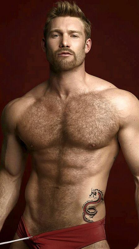 Hairy muscle blog