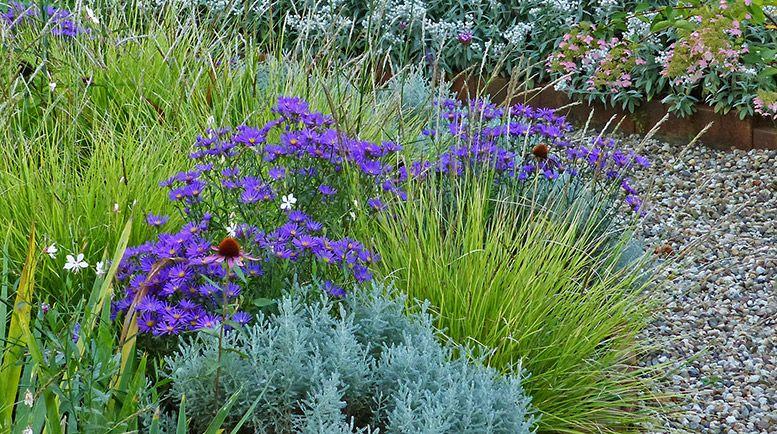 Garten Im September sandfrauchen lieblingspflanzen im september garten
