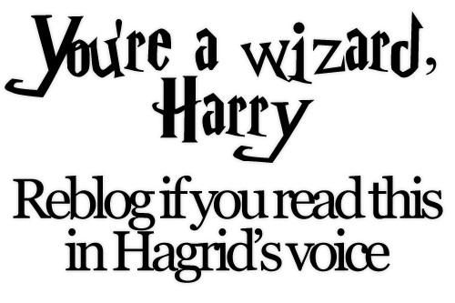 """It's not """"You're a wizard Harry"""" Its """"Yer a wizard Harry."""