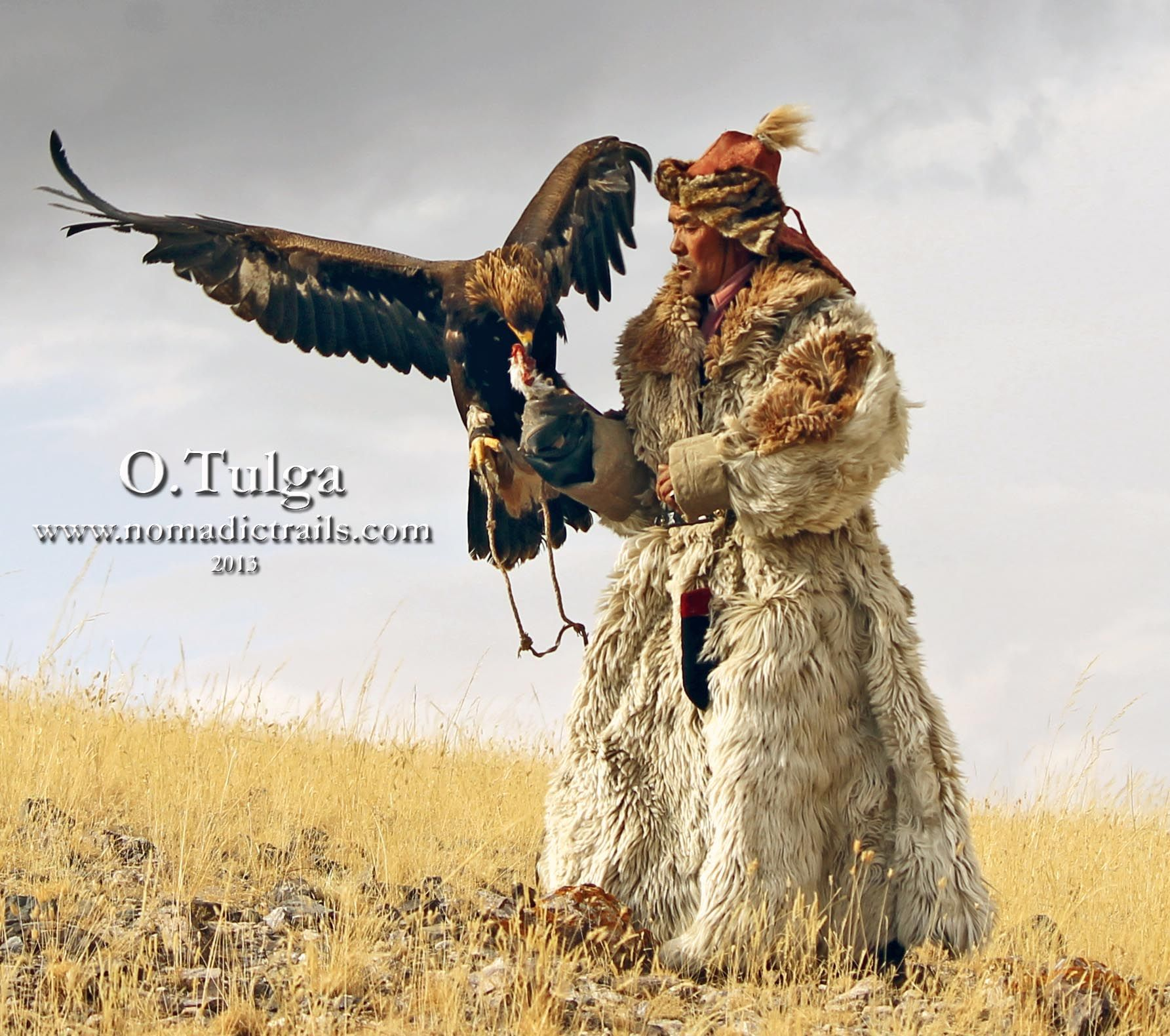 eagle hunting has been practiced in central asia for thousands of