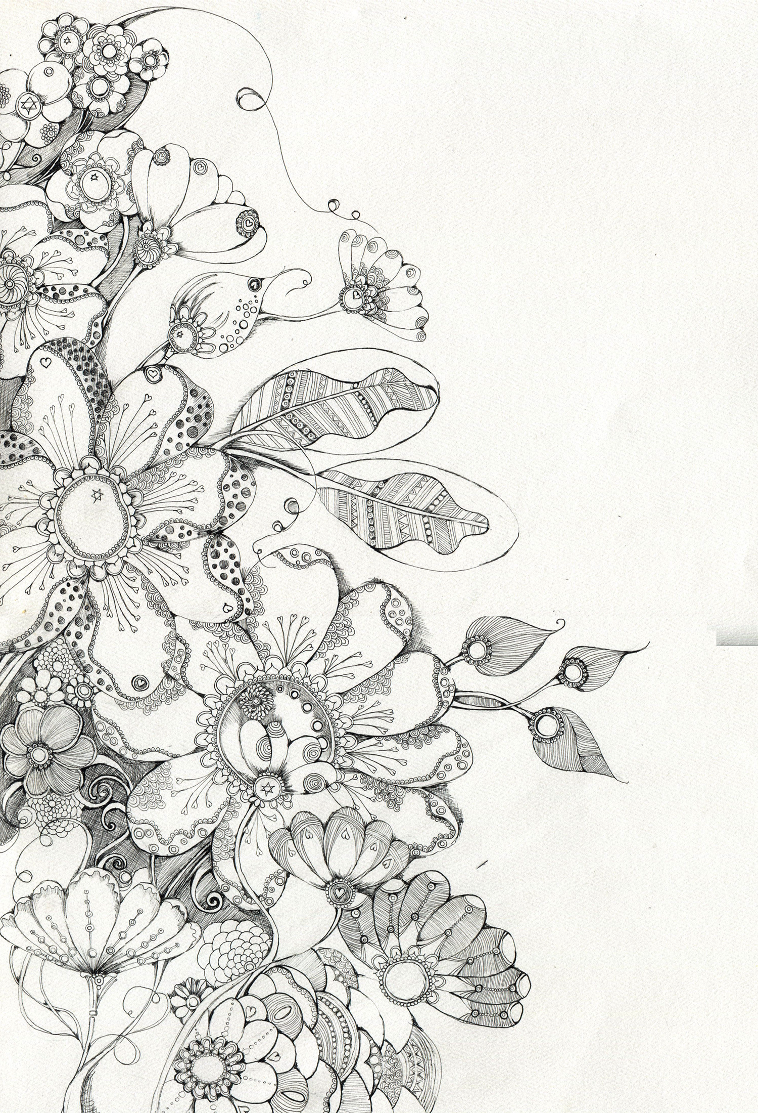 flowers_____by_lindzb.png 1,500×2,200 pixels