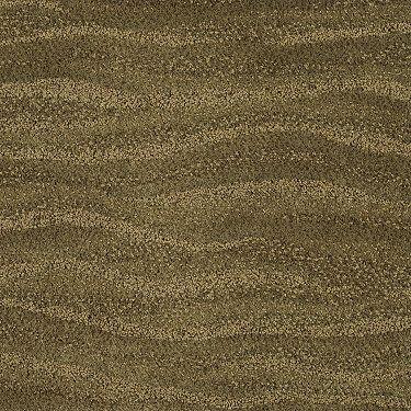 Tuftex Heatwave Tone On Carpet