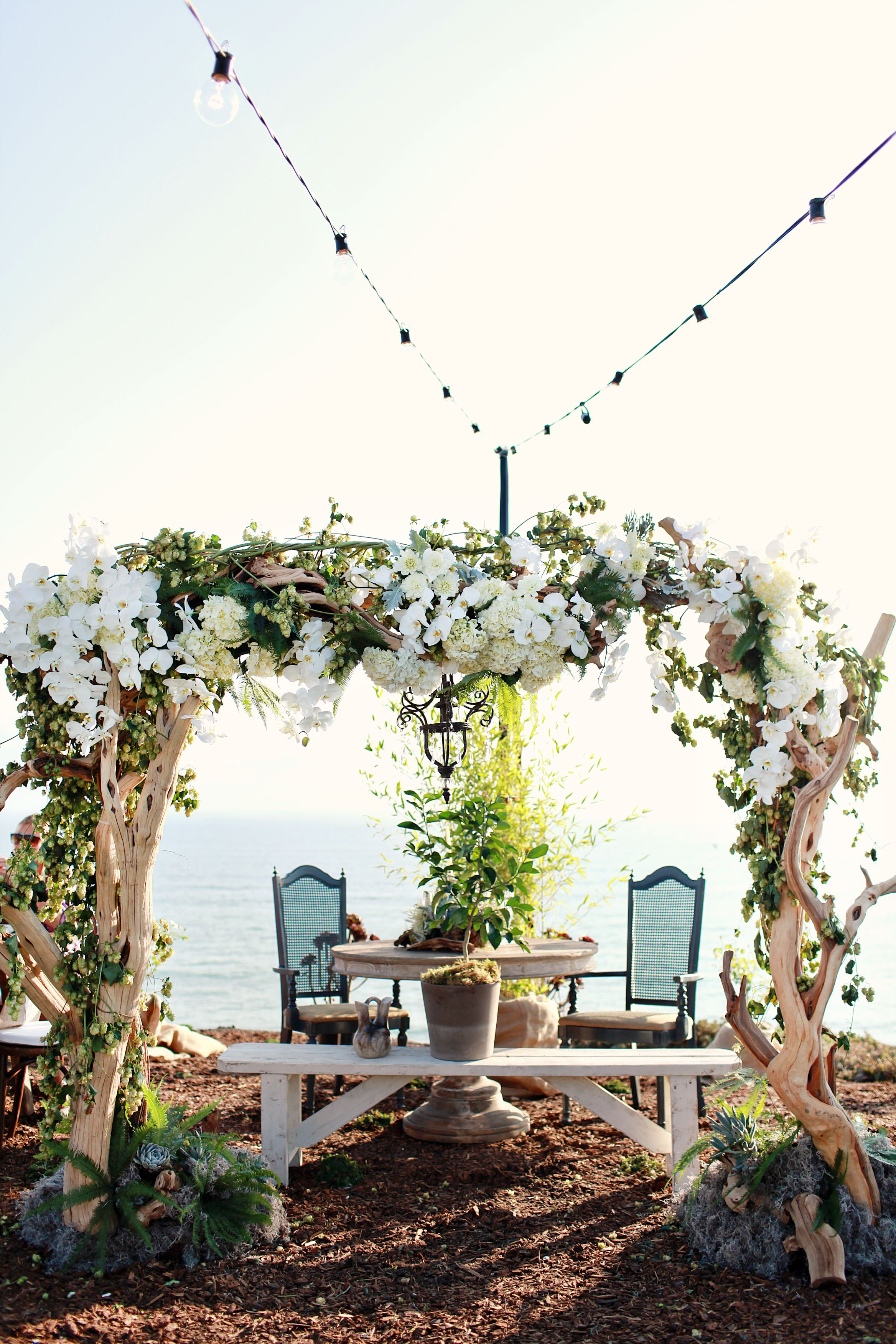 wedding canopy A rustic arch canopy was created for the ceremony and later was turned into the