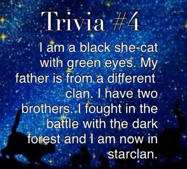 Warriors Book Series Quizzes: HollyLeaf (guessed By Breyanne Lenox)