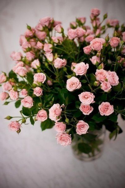 Krasivye Cvety Poisk V Google Pink Rose Bouquet Flower Arrangements Rose