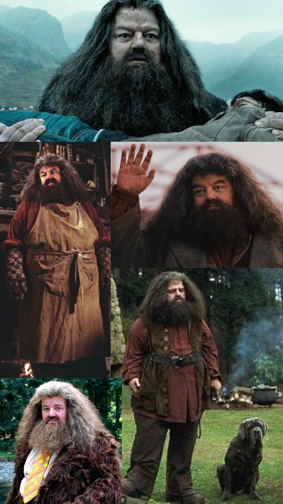 Hagrid Harry Potter Pictures Hagrid Harry Potter