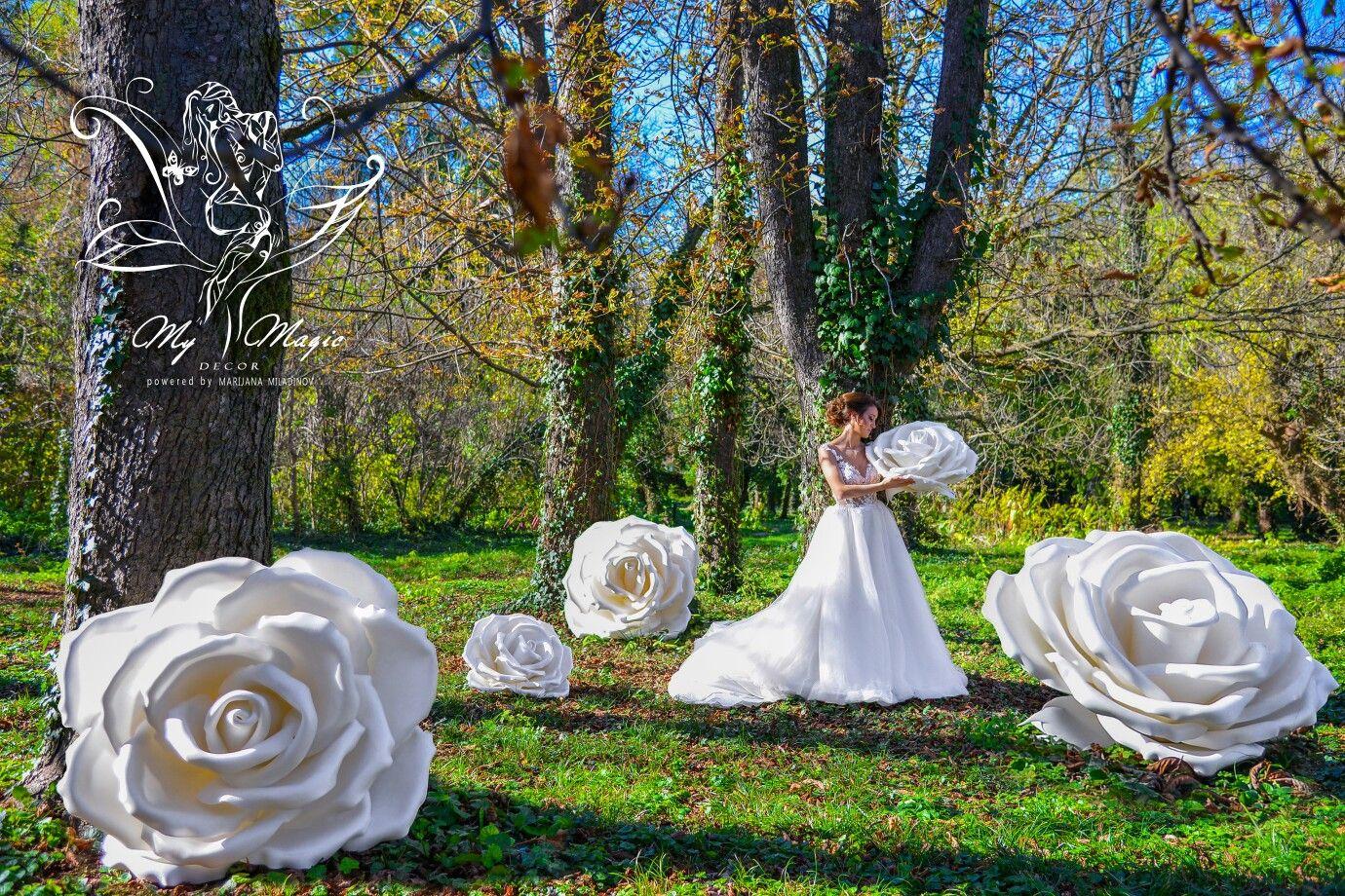 #mymagicdecor #serbia #novisad #love #wedding #photography #photoshooting