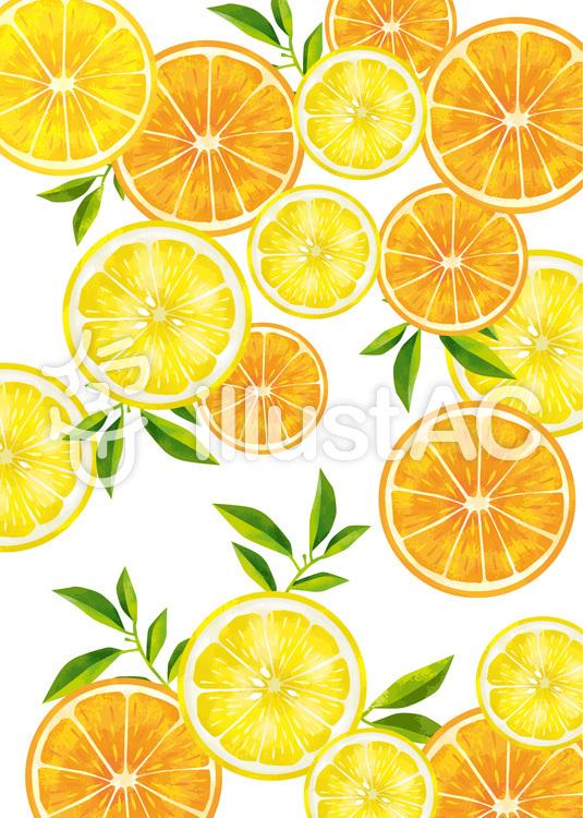 オレンジとレモン レモン イラスト フルーツ イラスト ゆず イラスト