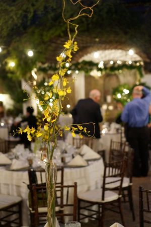 Yellow flowers. Centerpiece. Wedding details. Exquisite color and details for this wedding reception!