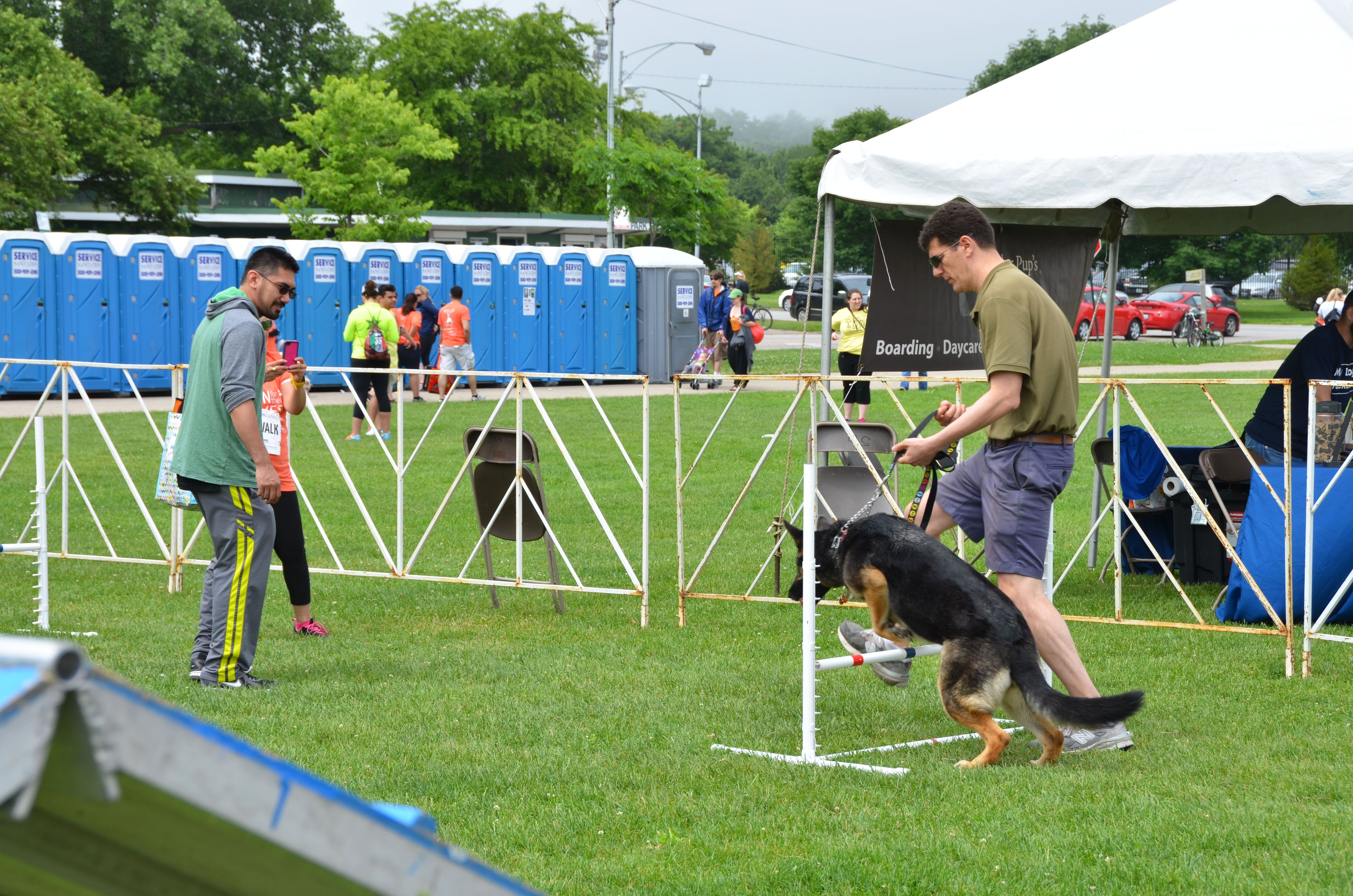 A dog participating in the agility course - Photography by Tracie Schneider