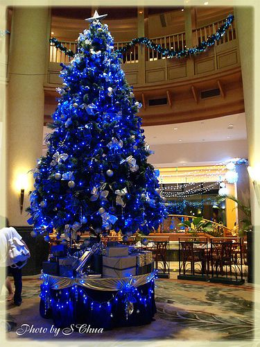 Blue Christmas Tree | Blue christmas, Christmas tree and Holidays