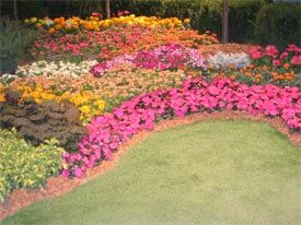 introduction to perennial garden design university of illinois extension color schemes - Flower Garden Ideas Illinois