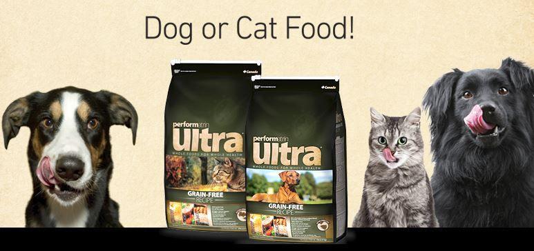 Win 1 Year S Supply Of Pet Valu Food Food Animals Pets Cat Food