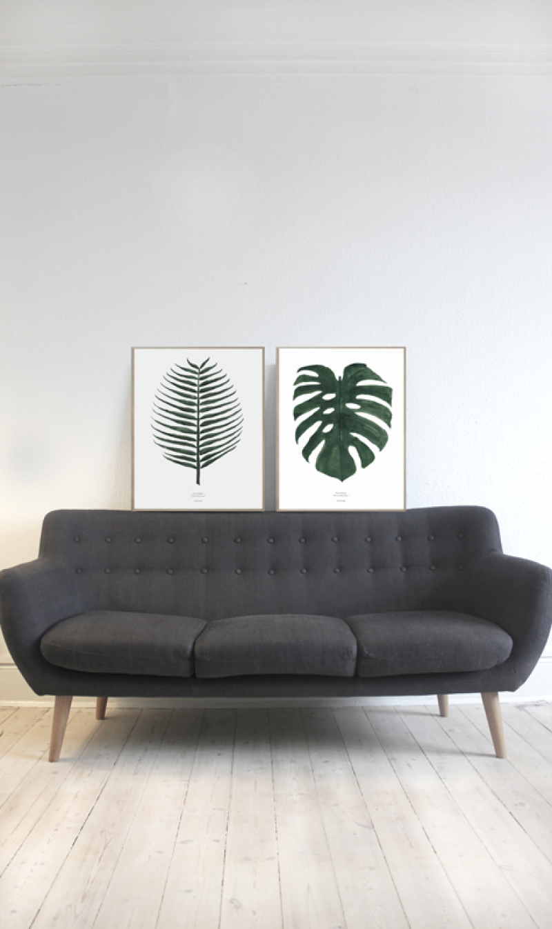 Monstera & Cosos plant print - Nordic, simple and botanic