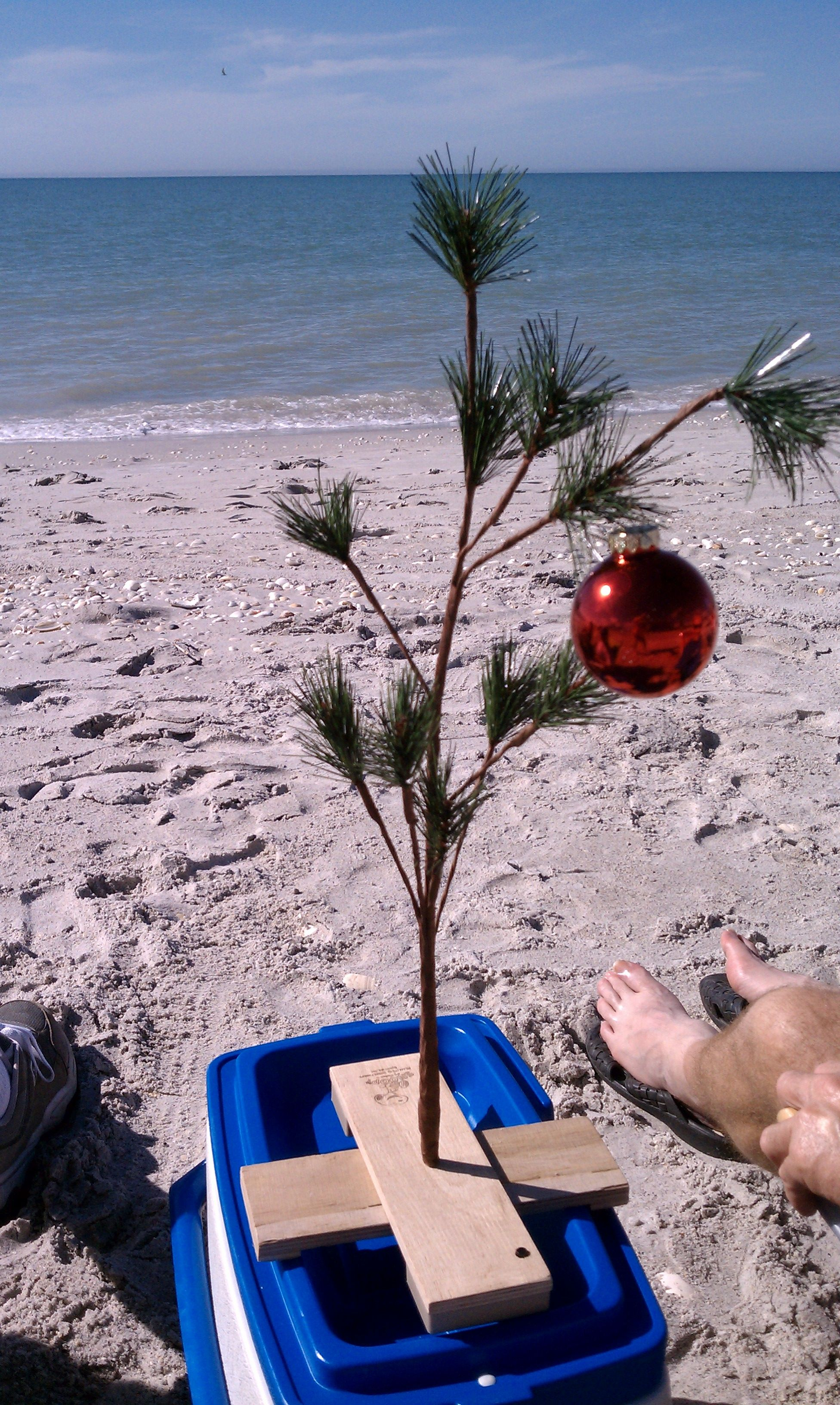 Christmas In Florida Images.Celebrating Christmas In Florida My Style Beach