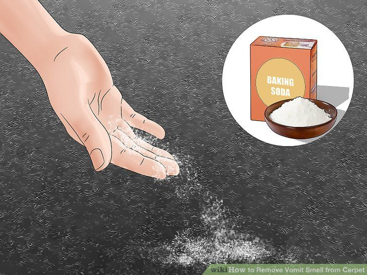 How do i remove vomit smell from carpet feels free to