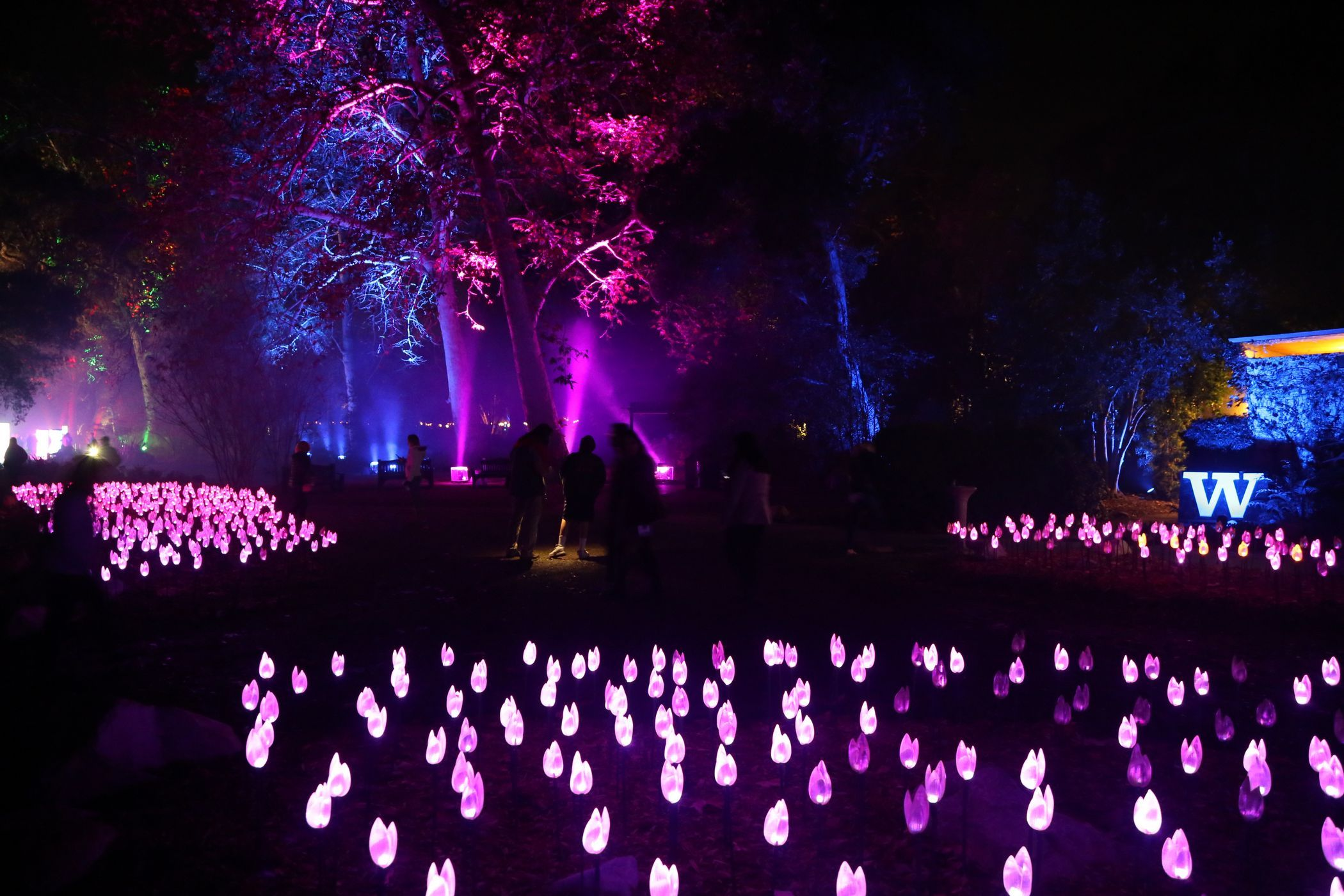 10b6f48875adb1290e75f5777f3354a6 - Enchanted Forest Of Lights At Descanso Gardens