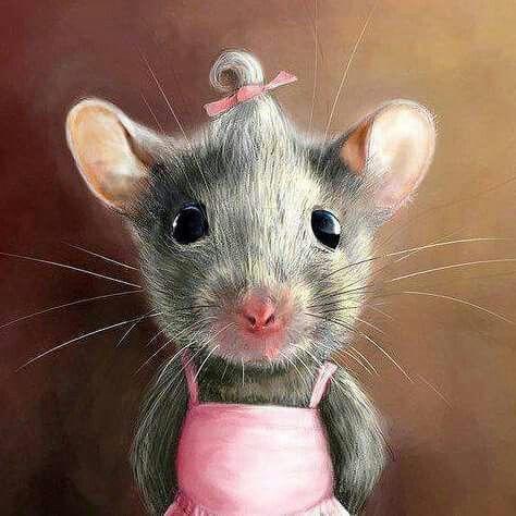 Lustige Bilder Mäuse