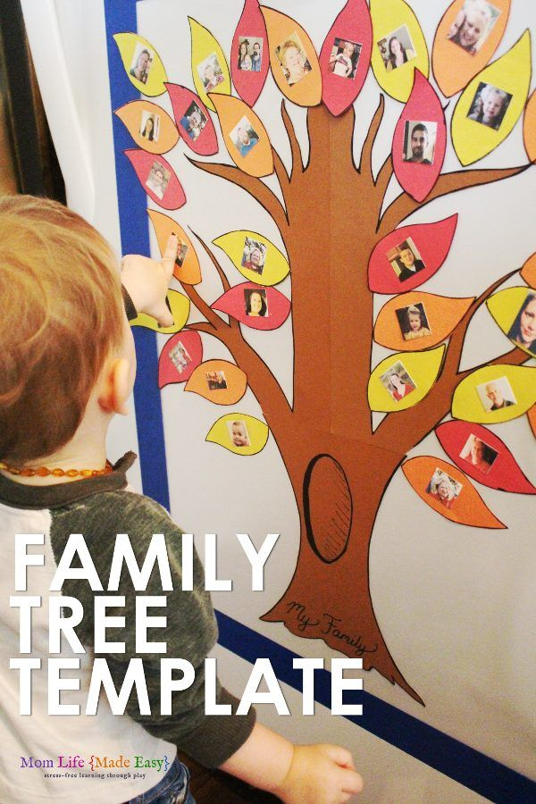 Family Tree Face Recognition Fridge Game Family tree