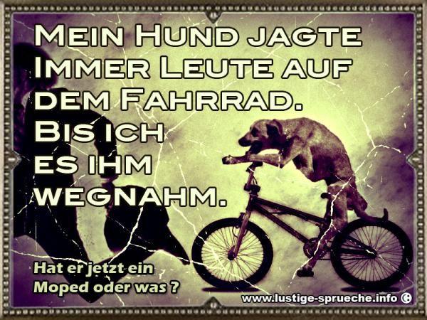 Auf dem Fahrrad verfolgt vom Hund | Lustige Sprüche und lustige