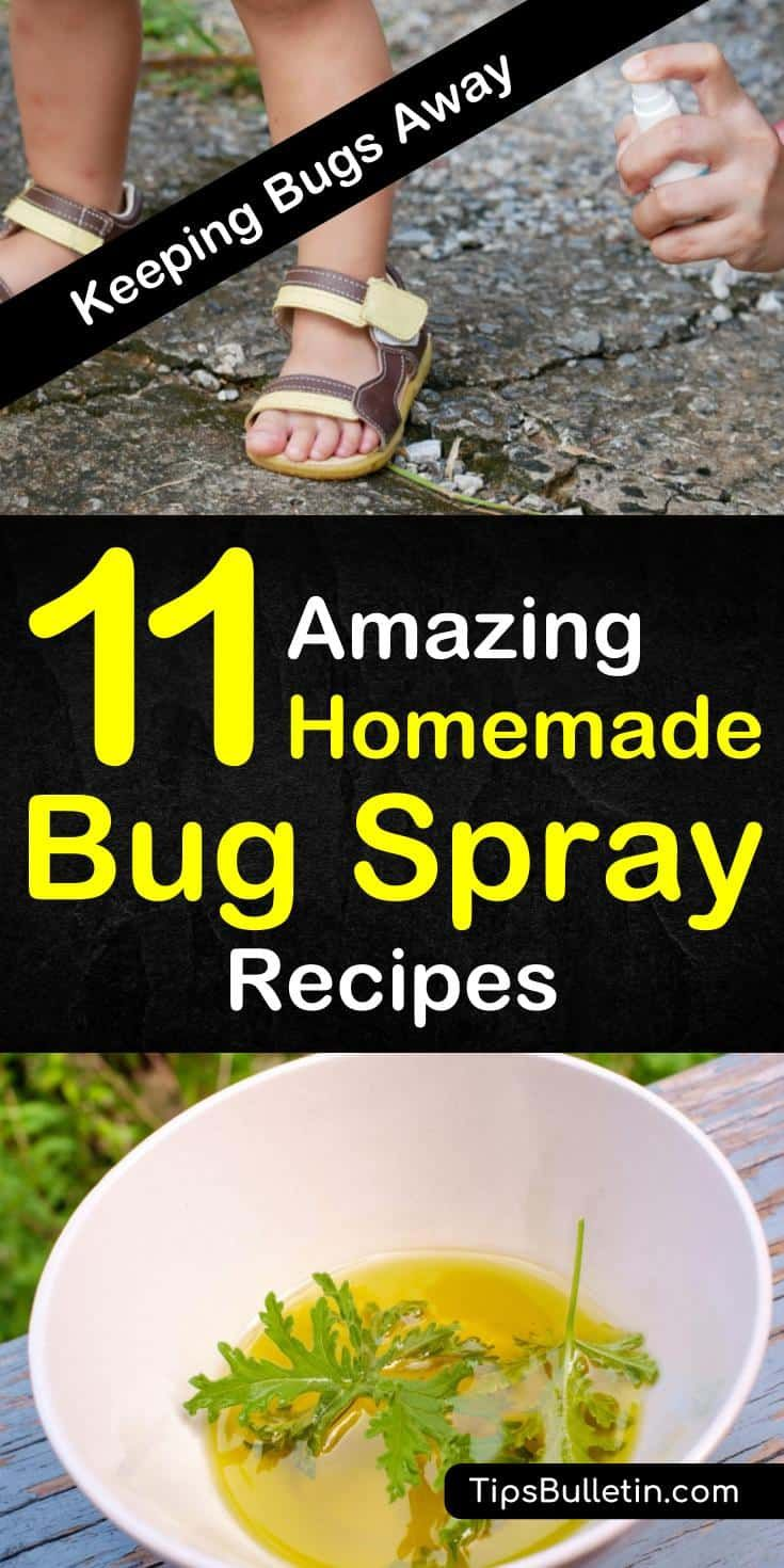 diy bug spray for plants using essential oils