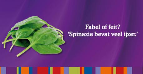 spinazie ijzer