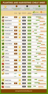 Photo of When to plant your vegetable garden # gardening, #planting # gardening …,  #Garden #gardent…