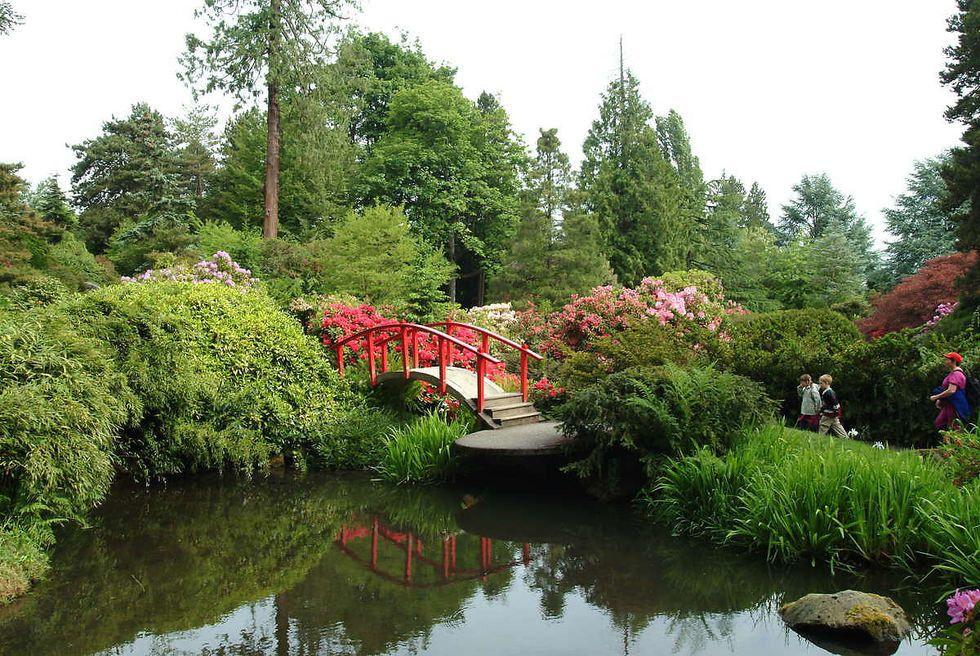 Kubota Gardens (With images) Japanese garden, Charming
