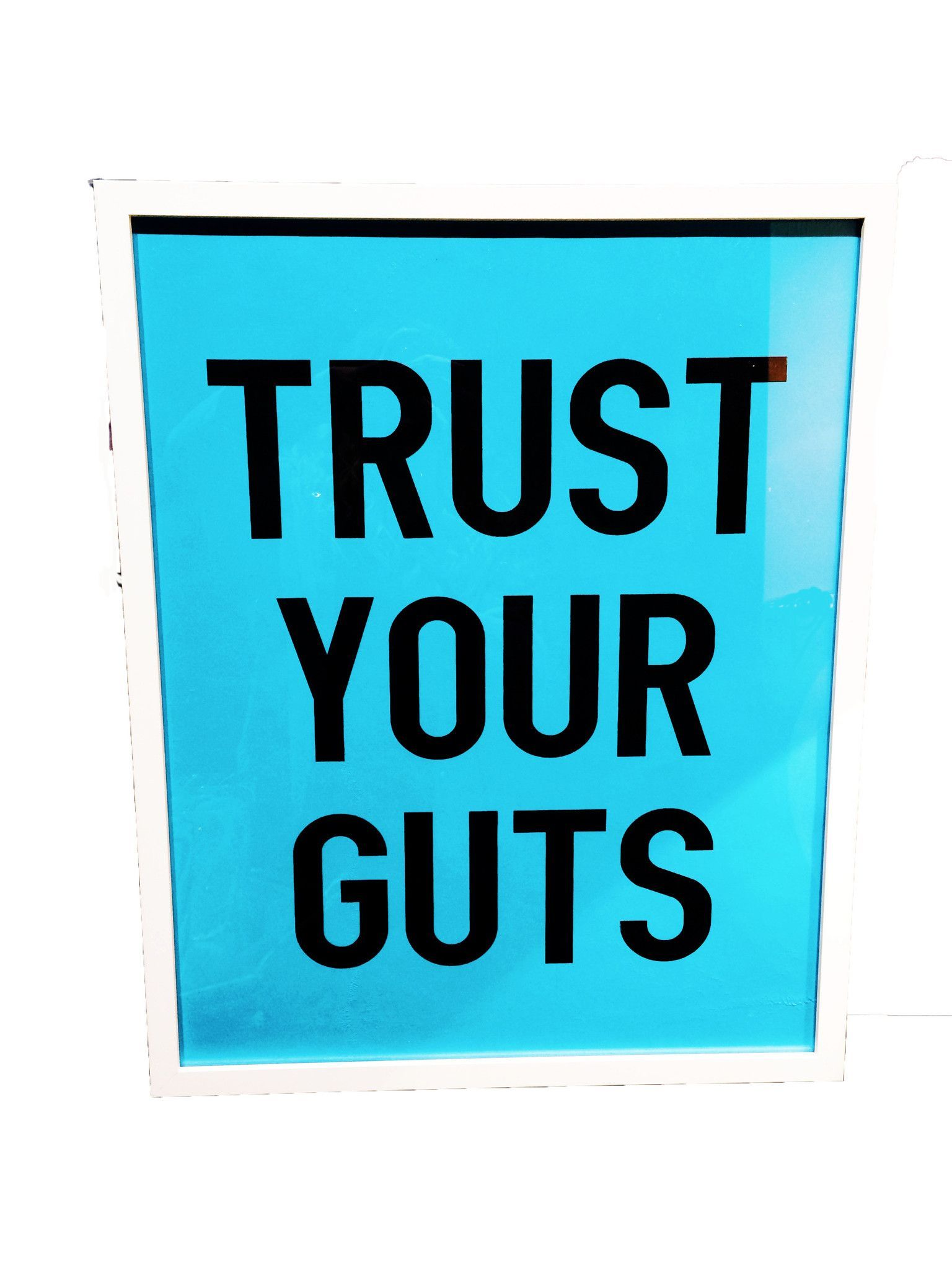 Trust Your Guts / Poster