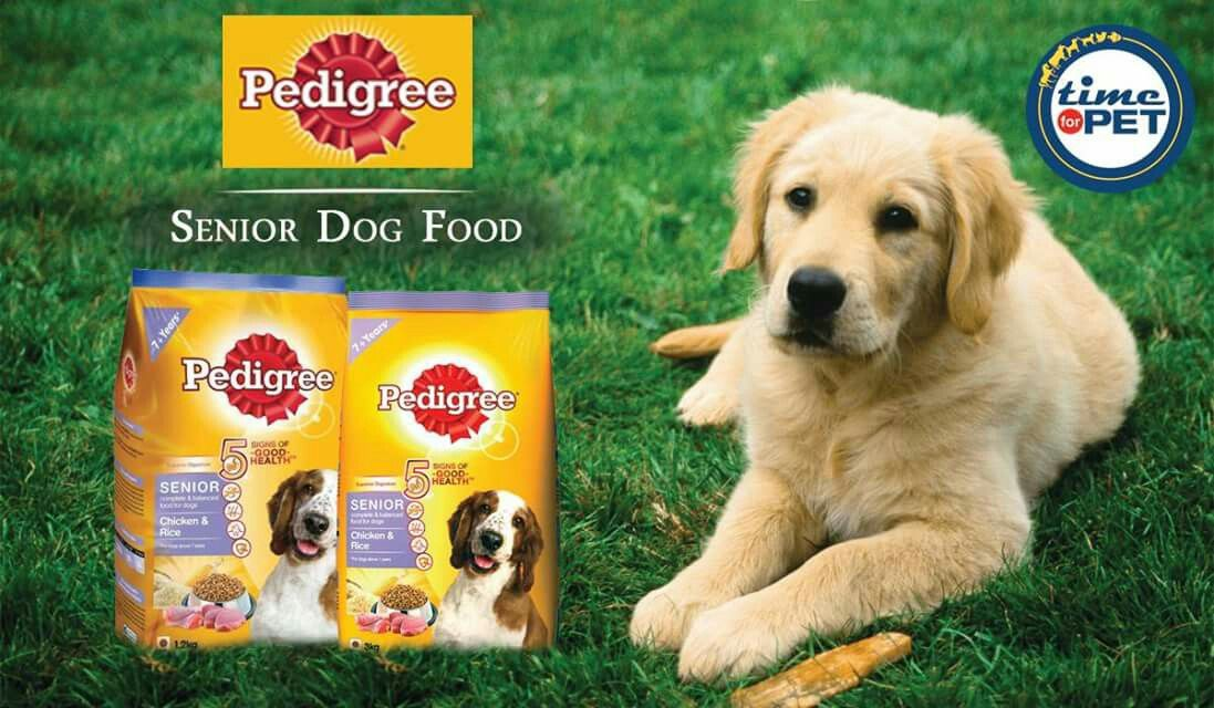 Perfect Start For Your Dogs Get Up To 11 Off On Pedigree Senior