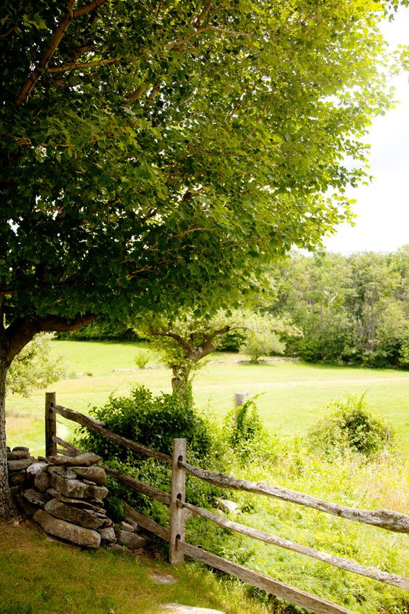 ♥ summertime NATURE Pinterest Fences, Country fences and