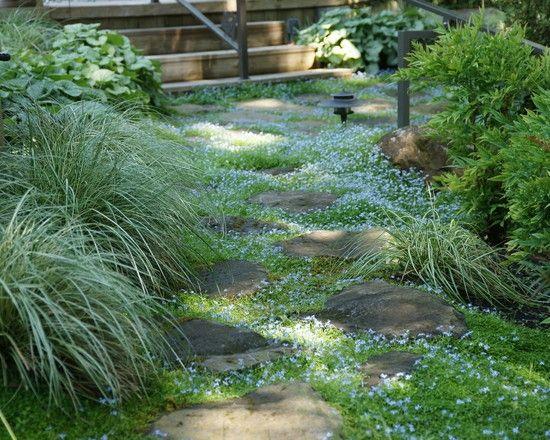 hinterhofgestaltung, überwucherter-gartenweg steine hinterhof gestaltung | backyard, Design ideen