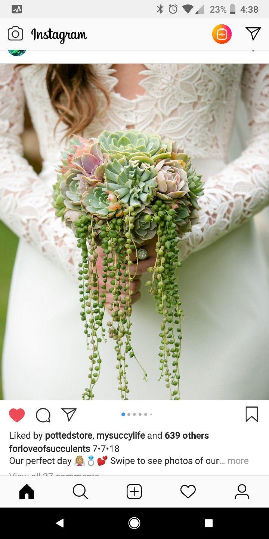 37+ Succulent wedding bouquet cost information