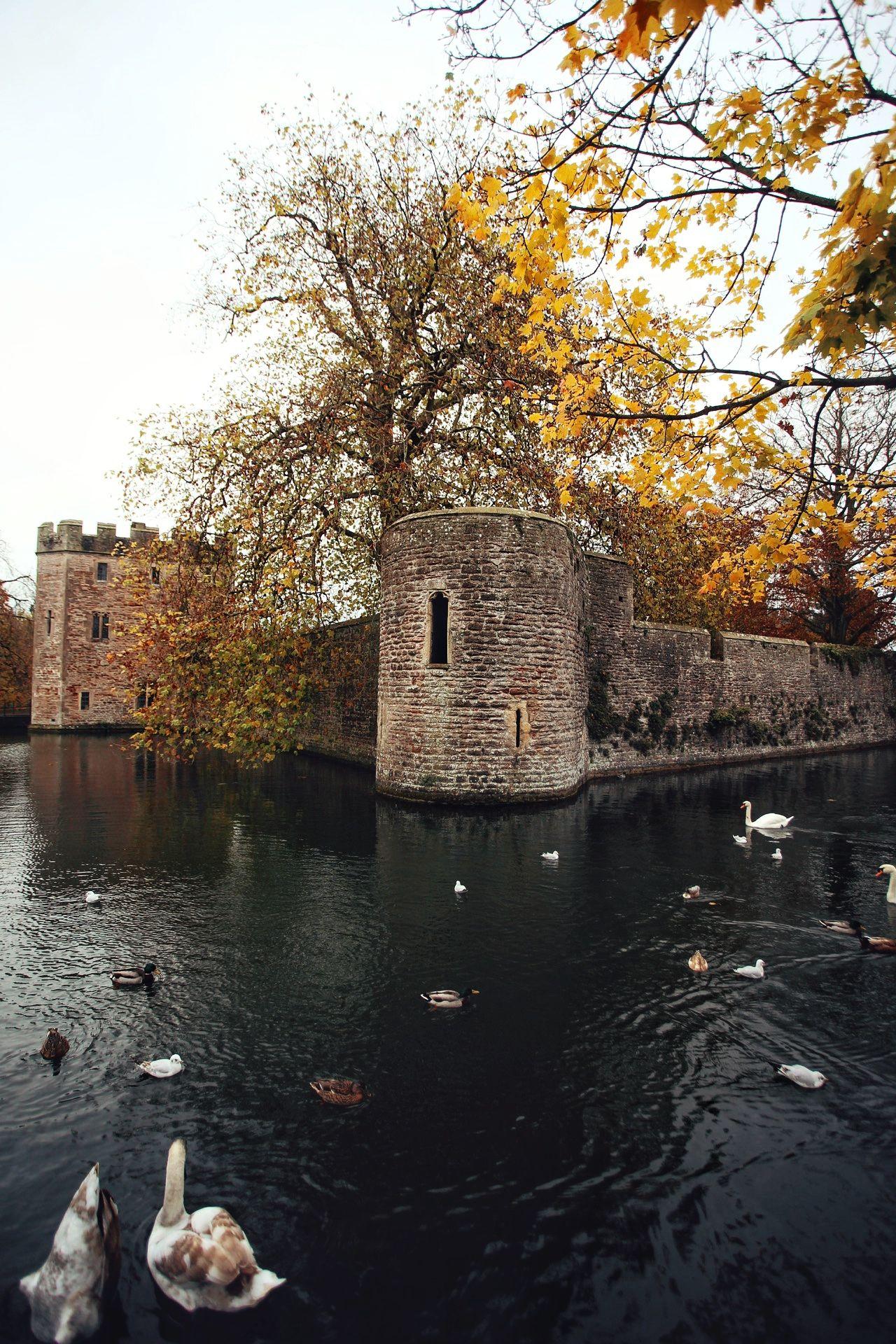Wells, Somerset  England  @monalogue on Instagram  | UK Travel