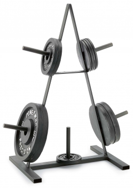 Plate Rack for his home gym. Bday present?  sc 1 st  Pinterest & Plate Rack for his home gym. Bday present? | Heavymetalgym ...