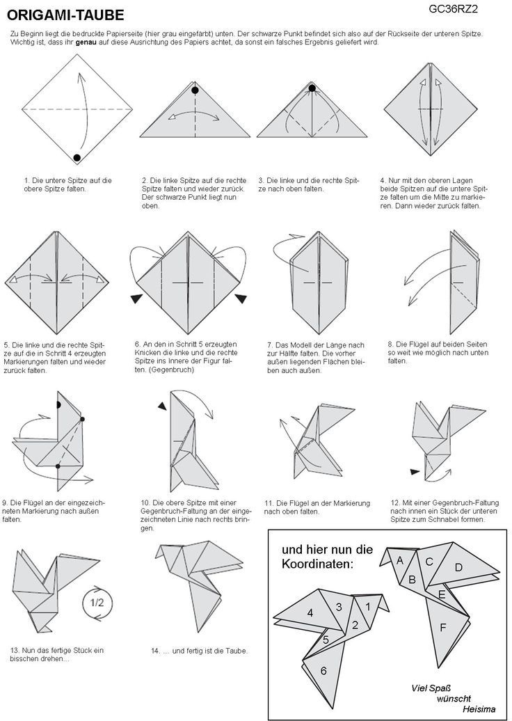 Instructions For Traditional Origami Dove