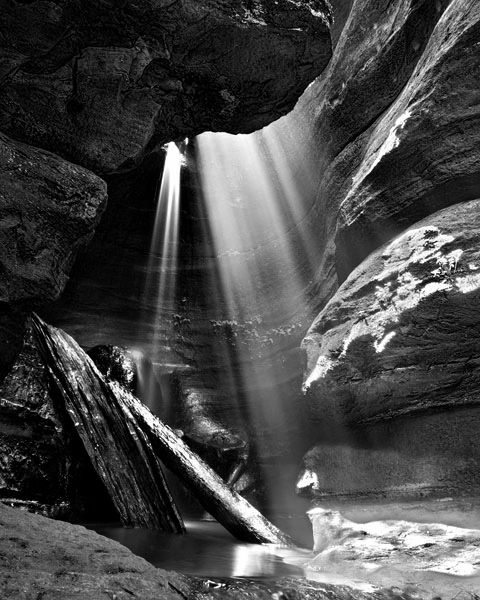 Beautiful Black And White Nature Photography Nature Photography White Photography Black And White Photography