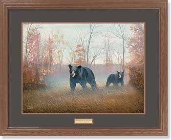 Backwoods BruinsBlack Bears Framed Print • Wildlife