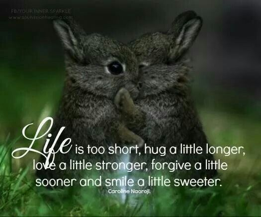 Life is too short....Hug, love and smile....