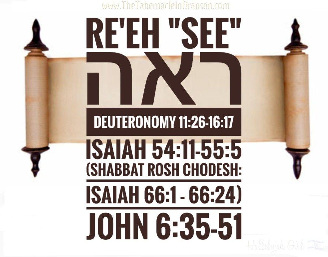 Pin By Angela Renee On Learn Your Torah