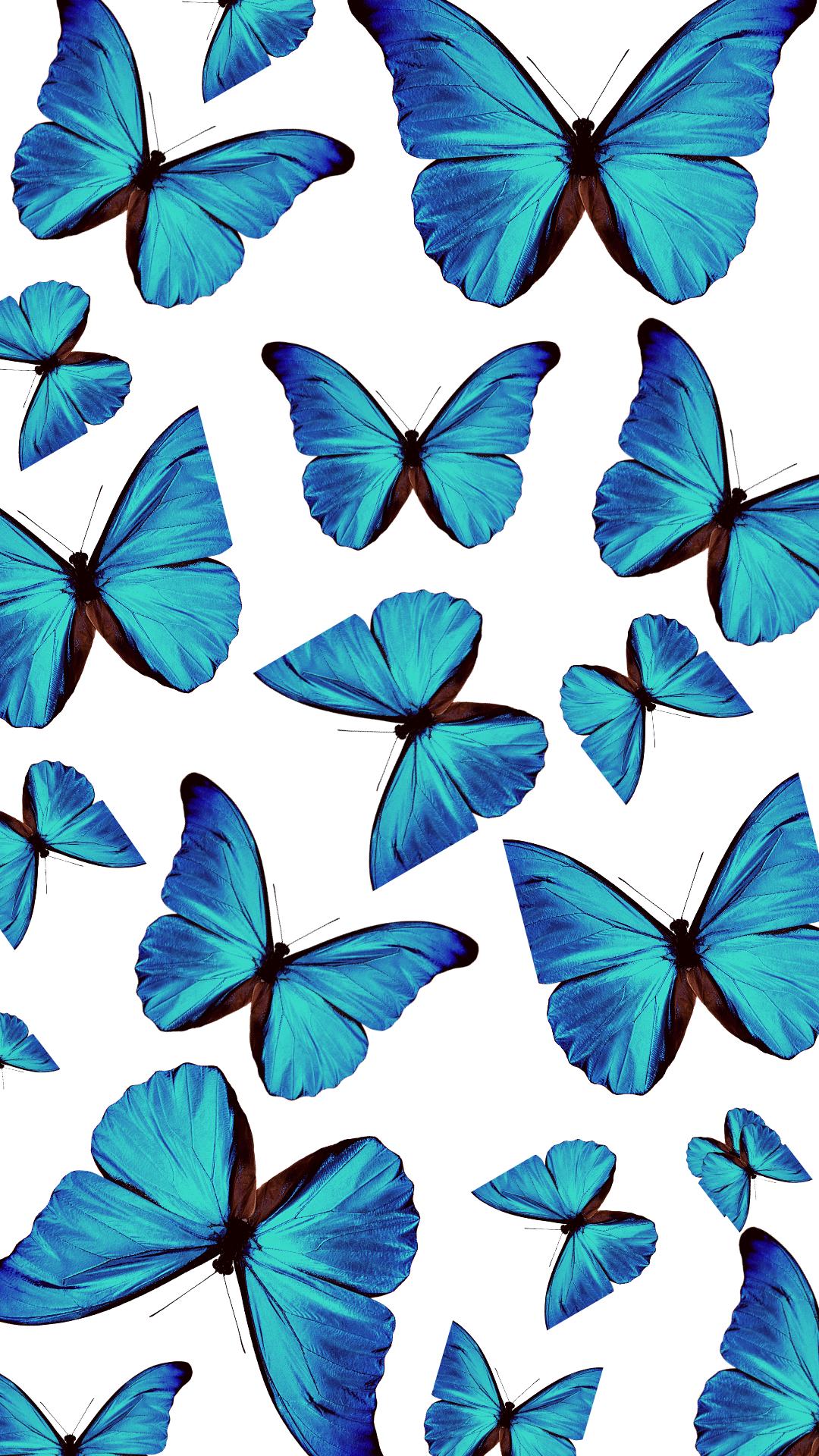 Blue Aesthetic Wallpaper Butterfly Wallpaper Backgrounds Blue Butterfly Wallpaper Butterfly Wallpaper Iphone