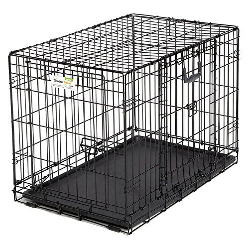 Midwest Homes For Pets Ovation Double Door Dog Crate 42 Inch For Sale Dog Gate Dog Crate Puppy Crate