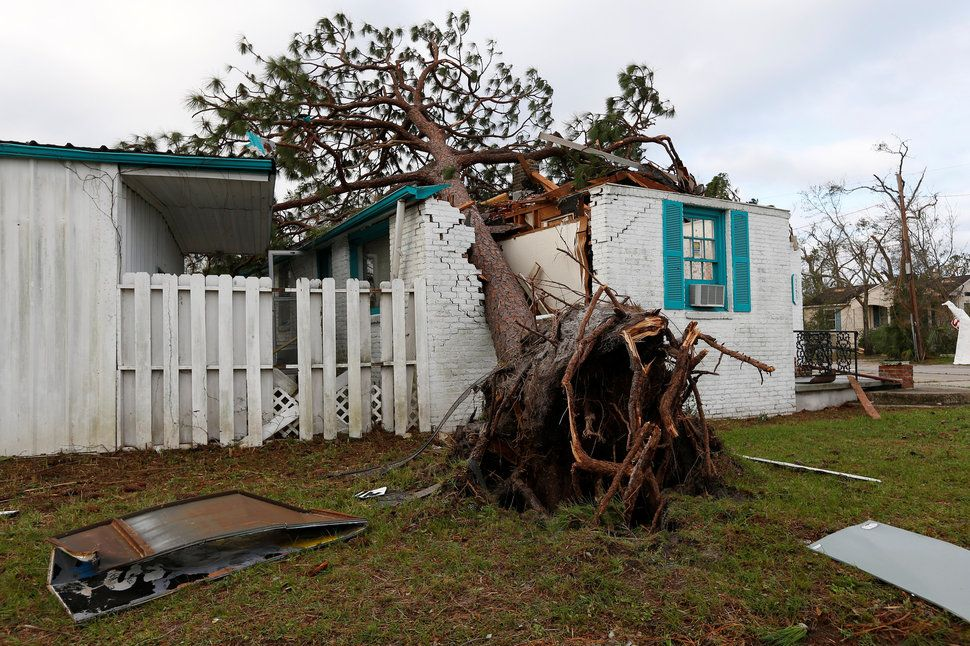 These Photos Show The Catastrophic Wind Damage From Hurricane Michael Florida Bay Panama City Panama Bay County